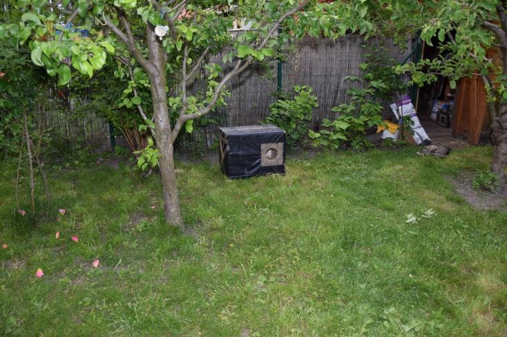 Kegyetlen módon végeztek macskákkal Dunaszerdahelyen – a rendőrség intenzíven nyomoz az elkövetők után!