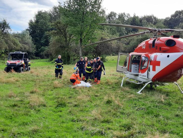 Medvetámadás ért egy nőt gombászás közben, mentőhelikopterrel szállították kórházba