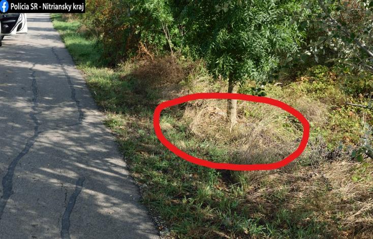Elképesztő! 316 darab őzlábat találtak kidobva az út mellett (FOTÓK)