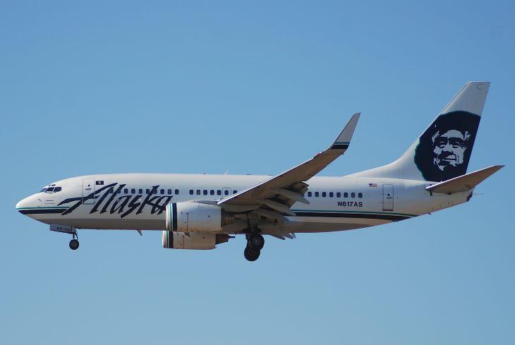 Medvét gázolt el egy repülőgép Alaszkában - az anyamedve nem élte túl
