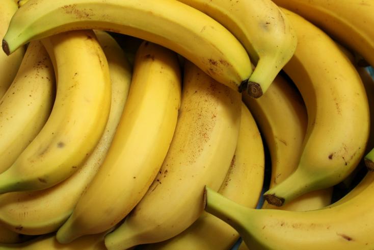 Három tonna kokaint találtak egy banánpüré-szállítmányba rejtve