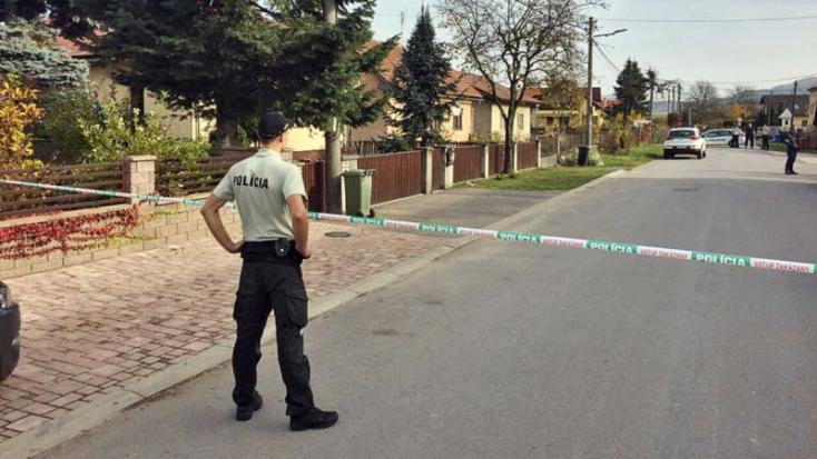 BORZALOM: Baltával gyilkolt meg egy nőt a bedrogozott fiatal