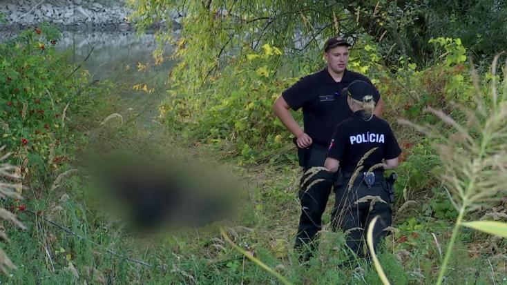 Bomló holttestet találtak Vágfüzes közelében