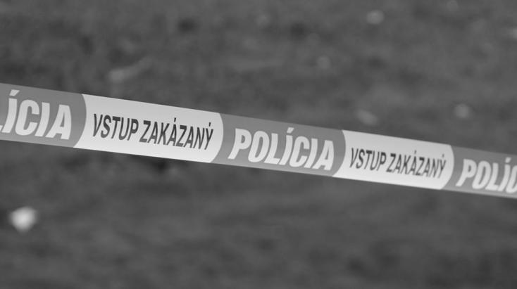 Holtan találták meg egy erdőben az eltűntként keresett 36 éves férfit