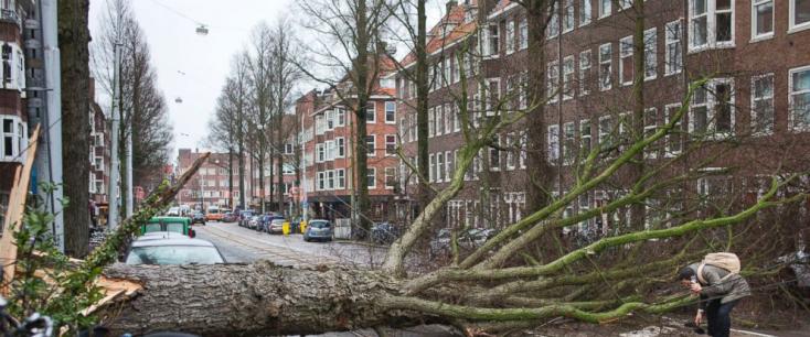 Halálos áldozatokat követelt az erős szél Belgiumban és Hollandiában